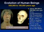 evolution of human beings 500 000 to 100 000 years ago1