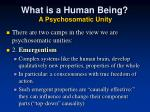 what is a human being a psychosomatic unity1