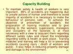 capacity building2