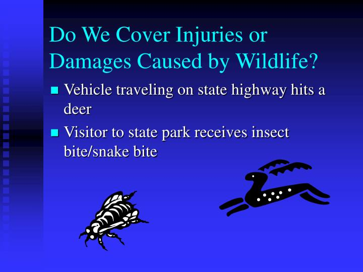 Do We Cover Injuries or Damages Caused by Wildlife?