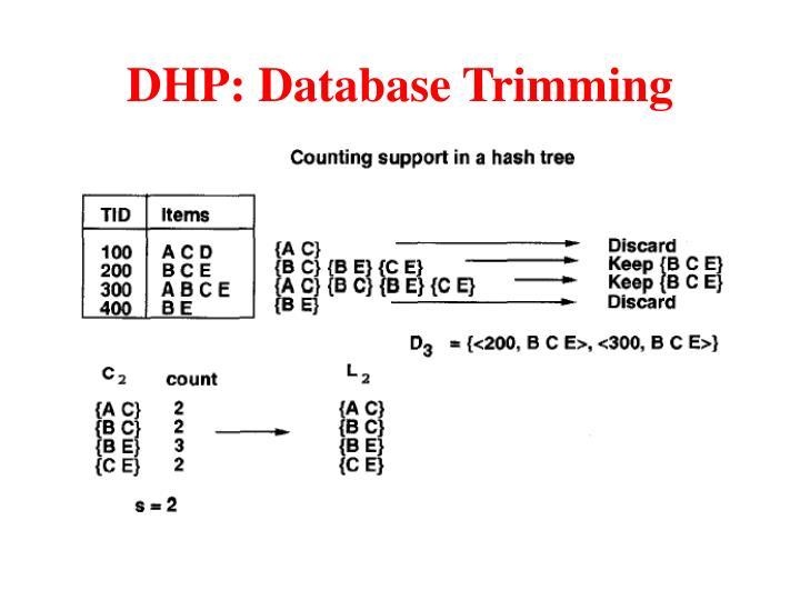 DHP: Database Trimming