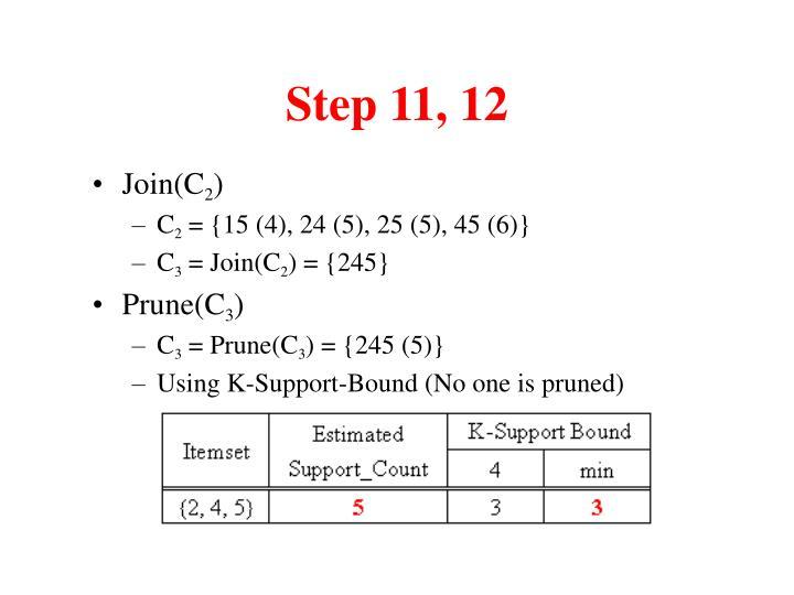 Step 11, 12