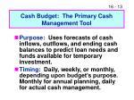 cash budget the primary cash management tool
