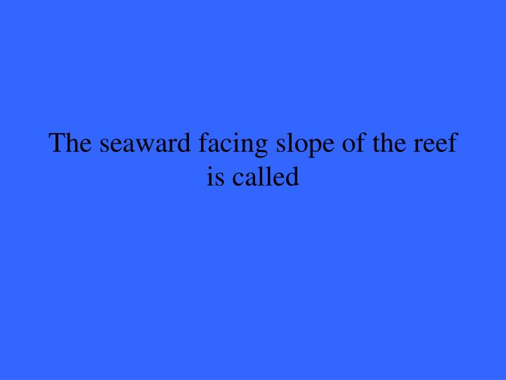 The seaward facing slope of the reef is called