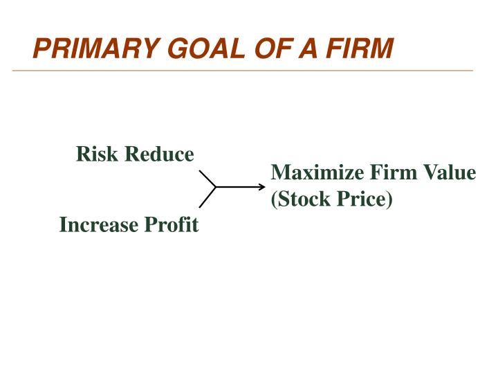 PRIMARY GOAL OF A FIRM