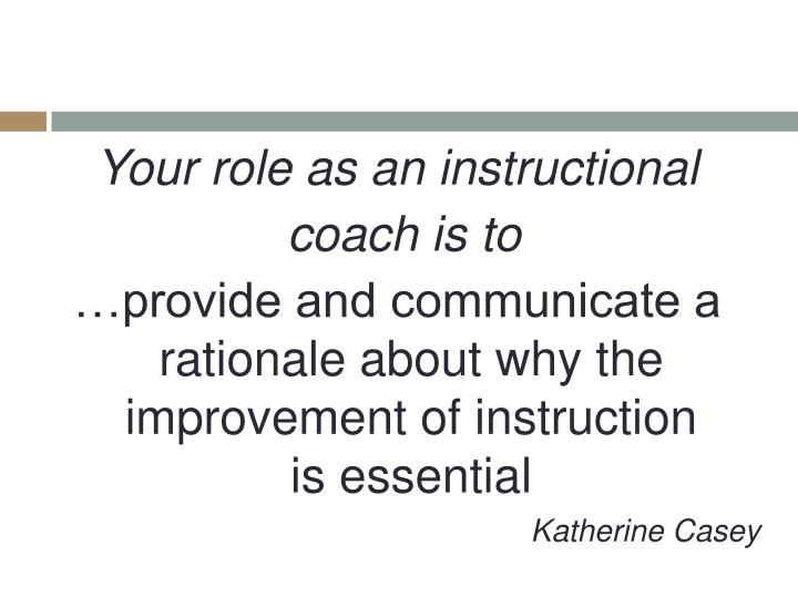 Your role as an instructional