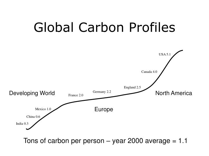 Global Carbon Profiles
