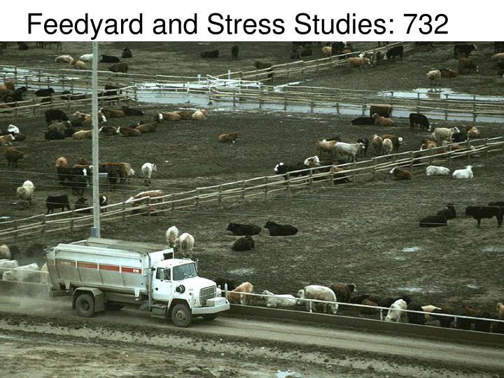Feedyard and Stress Studies: 732