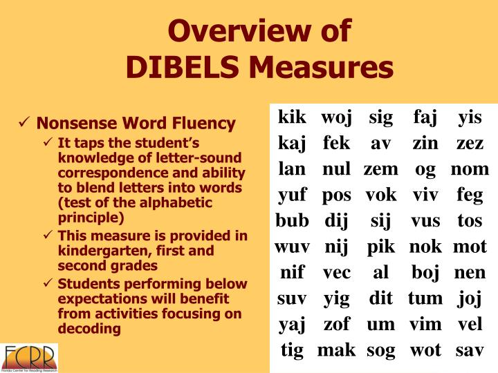 Overview of DIBELS Measures