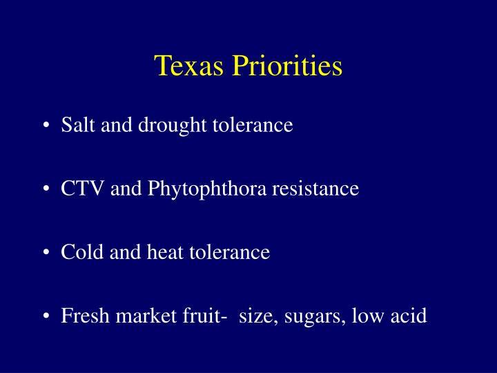 Texas Priorities