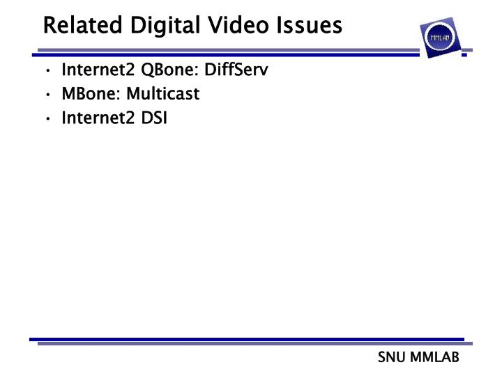 Related Digital Video Issues