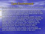 cave environment