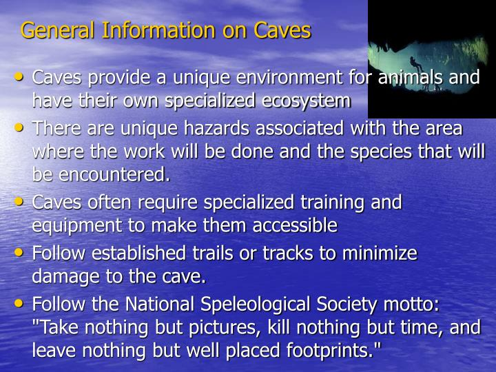 General Information on Caves