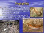troglophiles