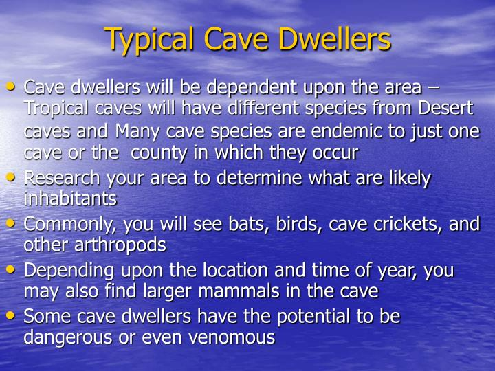 Typical Cave Dwellers