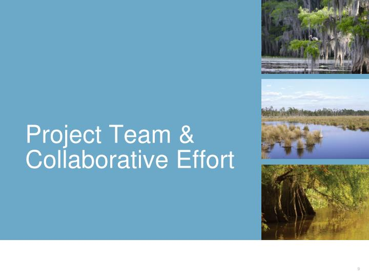 Project Team & Collaborative Effort