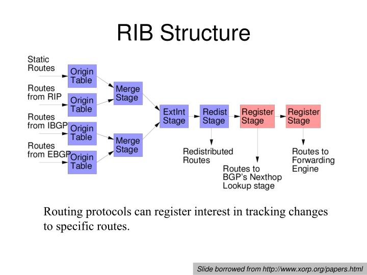 RIB Structure