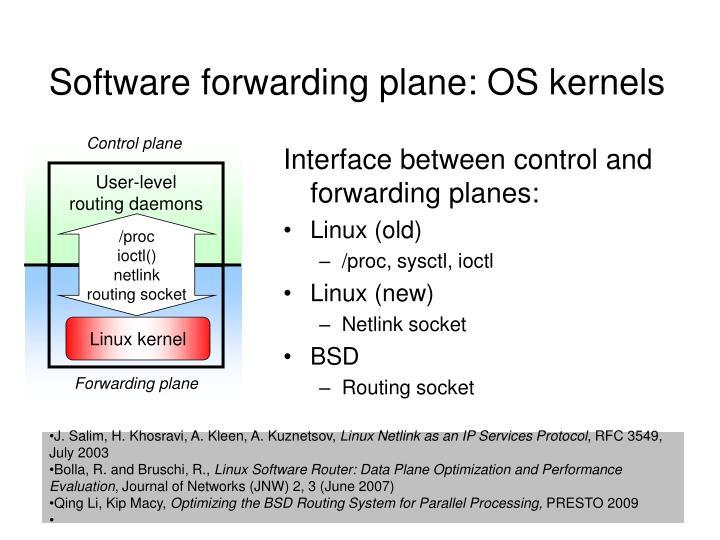 Software forwarding plane: OS kernels