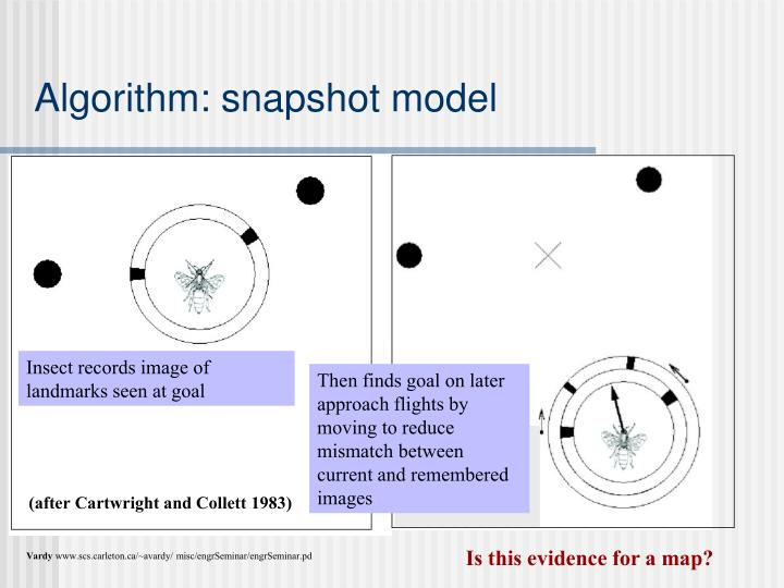 Then finds goal on later approach flights by moving to reduce mismatch between current and remembered images