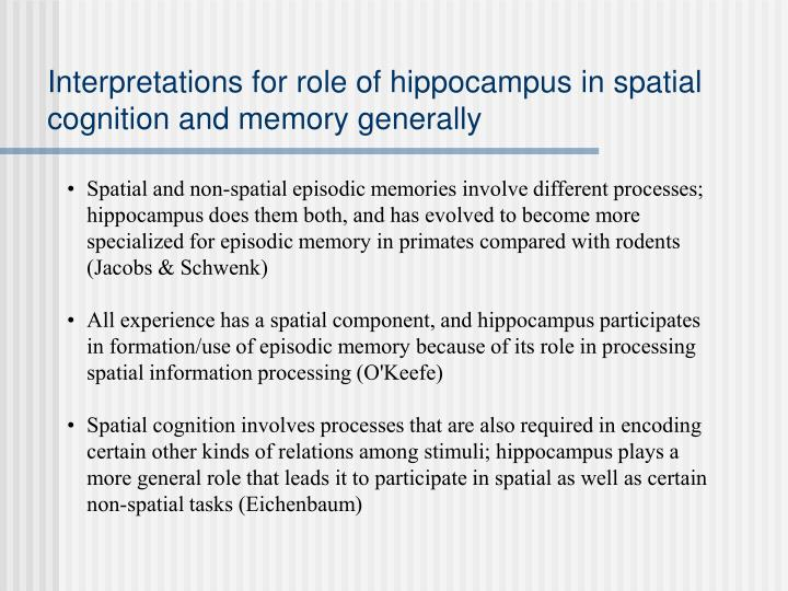 Interpretations for role of hippocampus in spatial cognition and memory generally