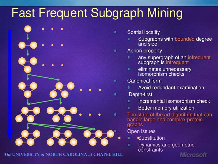 Fast Frequent Subgraph Mining