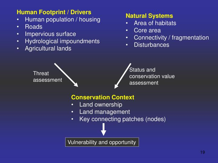 Human Footprint / Drivers