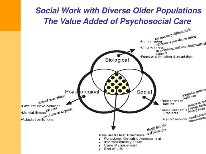 Social Work with Diverse Older Populations