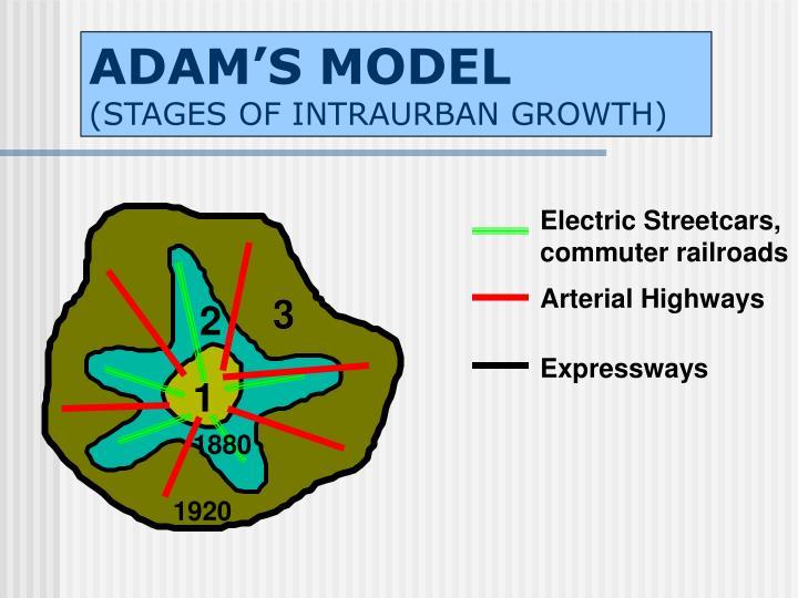 ADAM'S MODEL