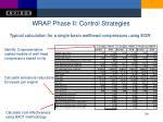wrap phase ii control strategies2