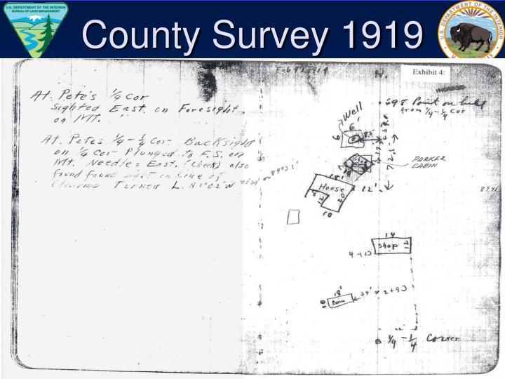 County Survey 1919