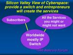silicon valley view of cyberspace provide a switch and entrepreneurs will create the services