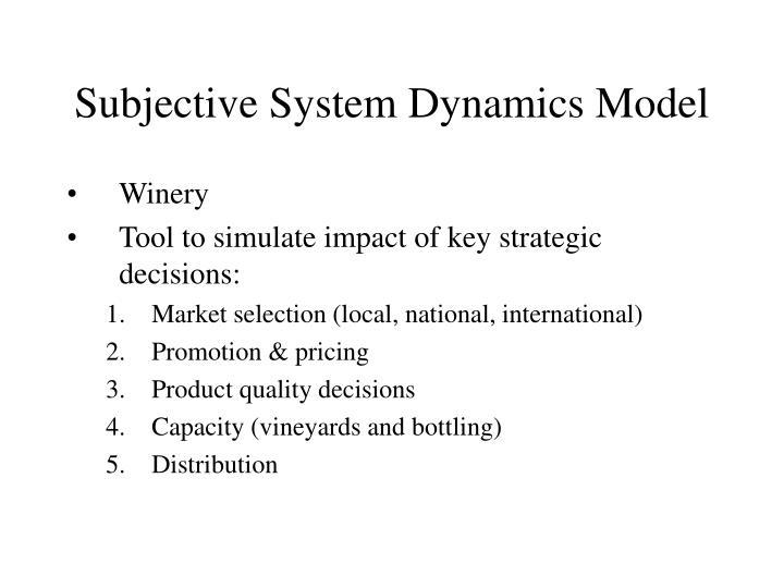 Subjective System Dynamics Model