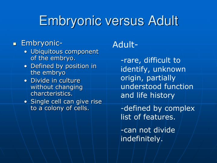 Embryonic-