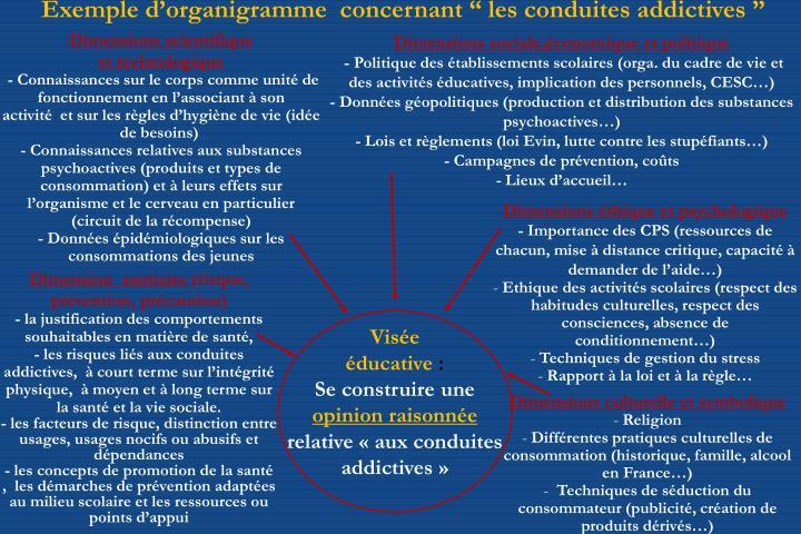 """Exemple d'organigramme  concernant """"les conduites addictives """""""