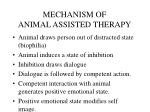 mechanism of animal assisted therapy