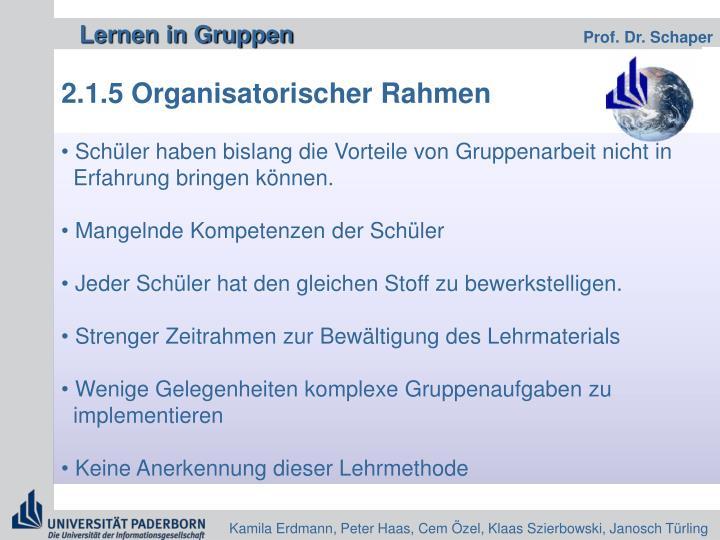 2.1.5 Organisatorischer Rahmen