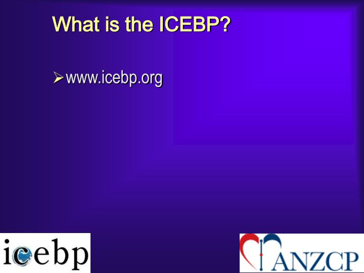 What is the ICEBP?