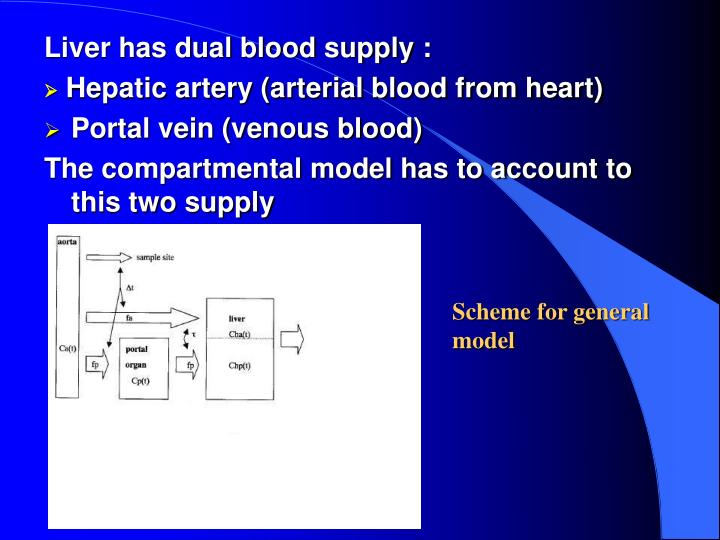 Liver has dual blood supply :