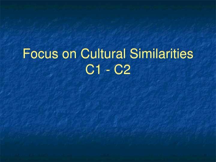 Focus on Cultural Similarities
