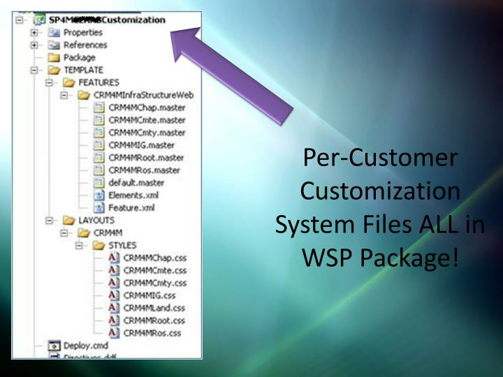 Per-Customer Customization System Files ALL in WSP Package!