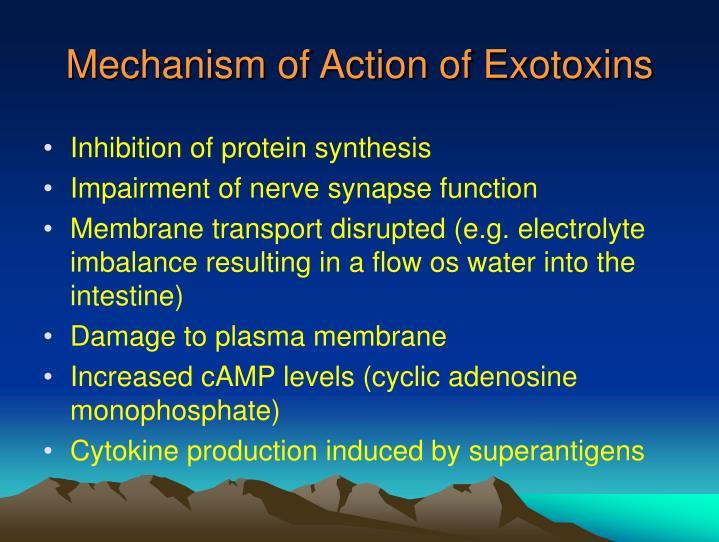 Mechanism of Action of Exotoxins