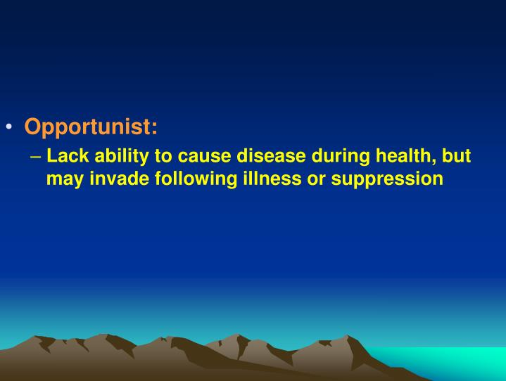 Opportunist:
