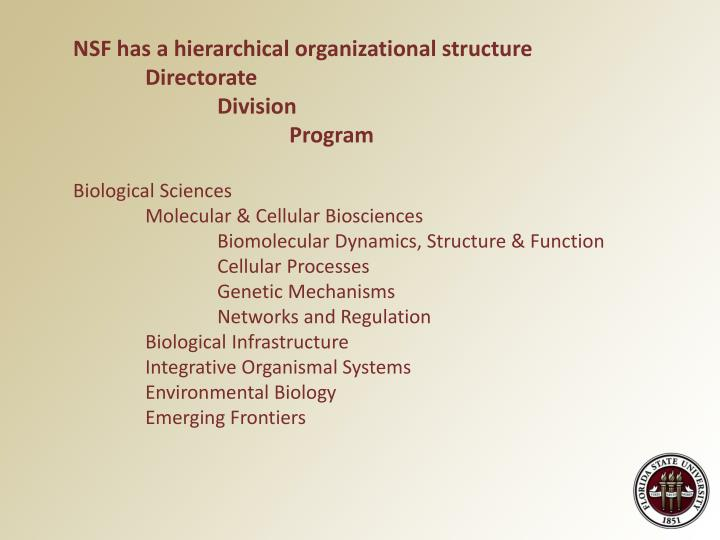 NSF has a hierarchical organizational structure