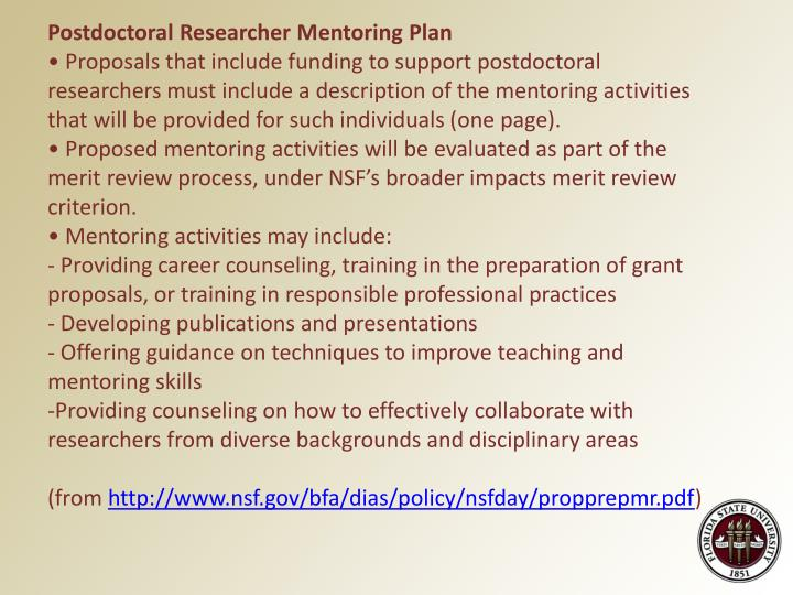 Postdoctoral Researcher Mentoring Plan