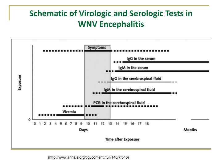 Schematic of Virologic and Serologic Tests in