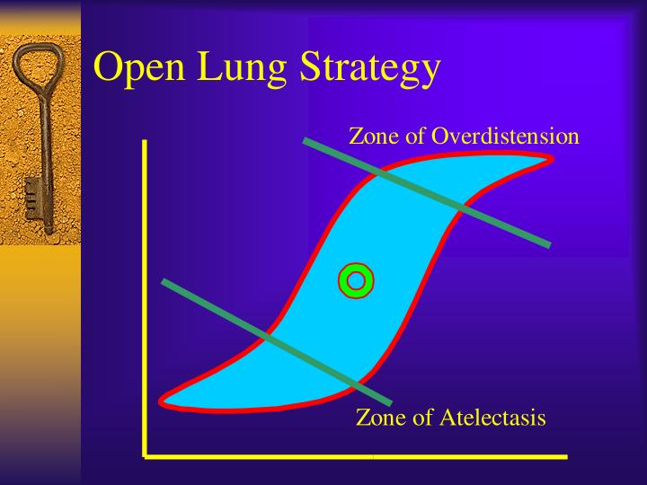 Open Lung Strategy