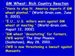 gm wheat rich country reaction