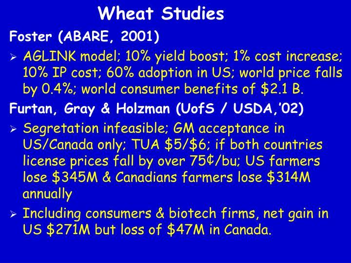 Wheat Studies