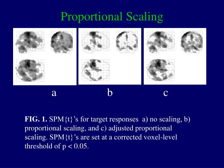 Proportional Scaling