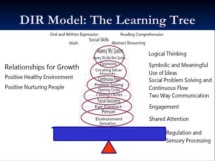 DIR Model: The